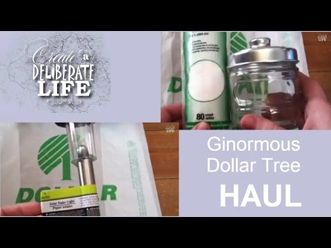 Ginormous Dollar Tree Haul | February 2015