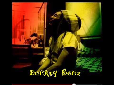 La Vendange De Son Ep 1 By Donkey Bonz - Mix Reggae Ragga Hip-hop Cumbia video