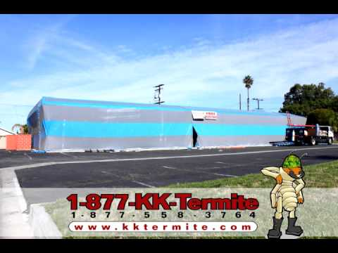 KK Termite Commercial Building Fumigation