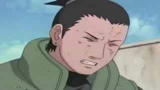 Insane Anime Laugh Collection