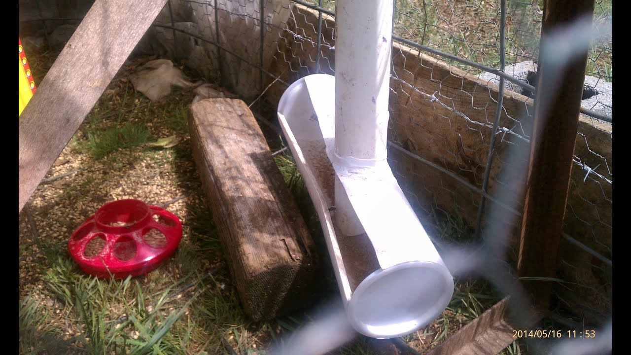 Chicken Pvc Feeder Plus Pvc Pex Water Nibbler No Wasted