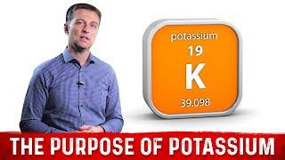 The Purpose of Potassium