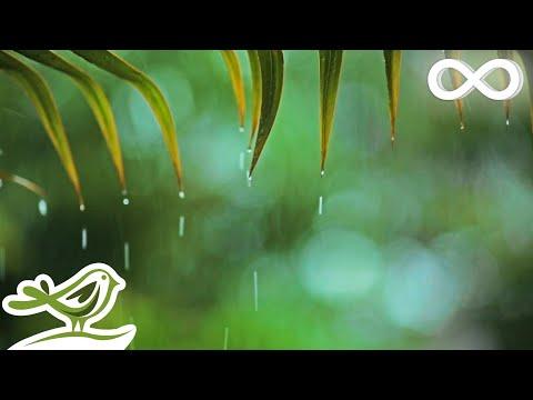 Relaxing Music & Soft Rain: Relaxing Piano Music, Sleep Music, Peaceful Music ★148🍀
