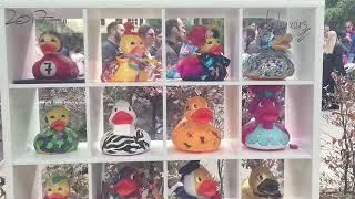 Duck Race 2018