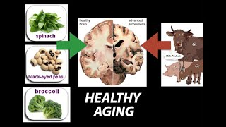 Healthy (Nutrient) Wealthy and Wise: Diet for Healthy Aging - Research on Aging