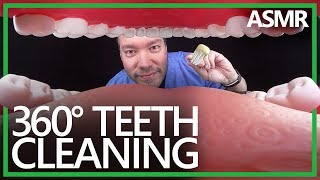 360° Dentist Teeth Cleaning (ASMR, 4K)