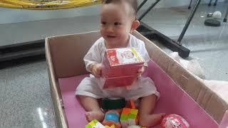 Em bé ngồi chơi trong thùng giấy do ba làm cực kỳ dễ thương