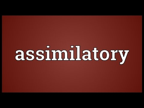 Header of assimilatory