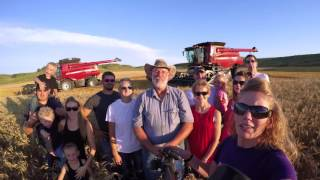 LaRosh Wheat Harvest 2016 Trailer