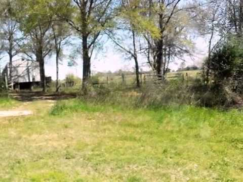 Homes for Sale - State Highway 81 Westville FL 32464 - Howard Leavins