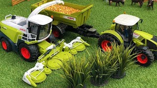 BRUDER Farming combine Forage harvester Tractor Claas Corn and Cows action!