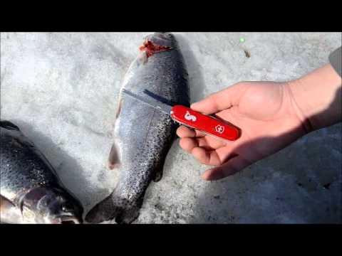 какой нож нужен для рыбака