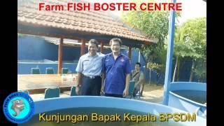 LELE SISTEM BOSTER  Kepala BPSDM KKP RI