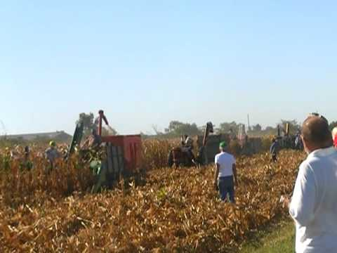 Corn Picking at the 2011 Half Century of Progress Rantoul, IL