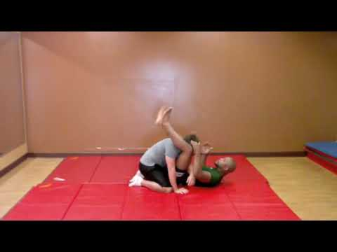 Rashad Evans MMA Tutorial 3: Submissions Image 1