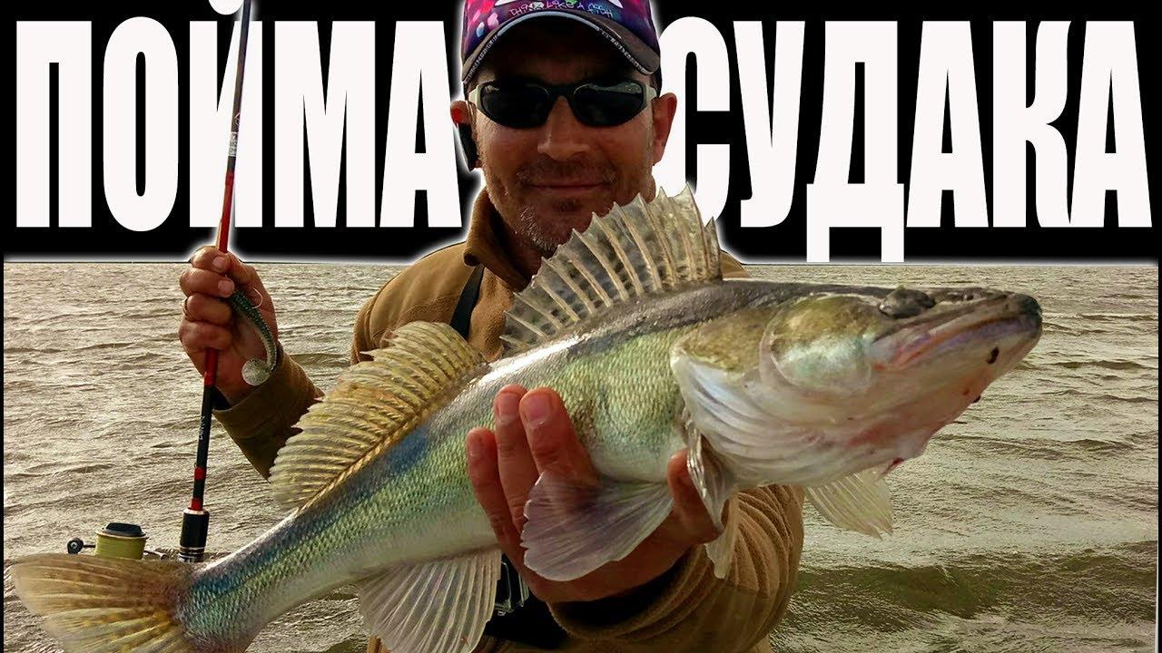 Как Поймать Судака  Рыбалка на Судака на джиг в середине Лета