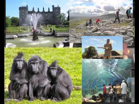 NIGERIAN CARNIVAL IRELAND 2012