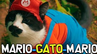 O GATINHO MIAU – Super Mario 3D World