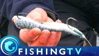 How to Target Larger Fish when Shore Fishing - Fishing TV