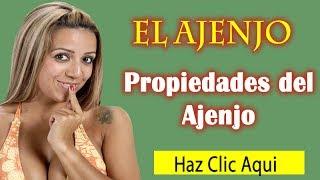Propiedades del Ajenjo|Plantas Medicinales