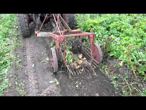 Картофелекопалка для трактора своими руками видео