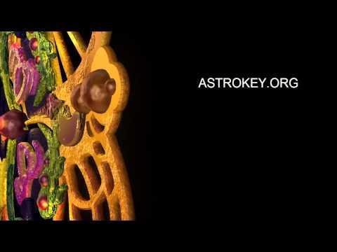 Заставка для канала astrokey.org (Лекции о нео эзотерике)
