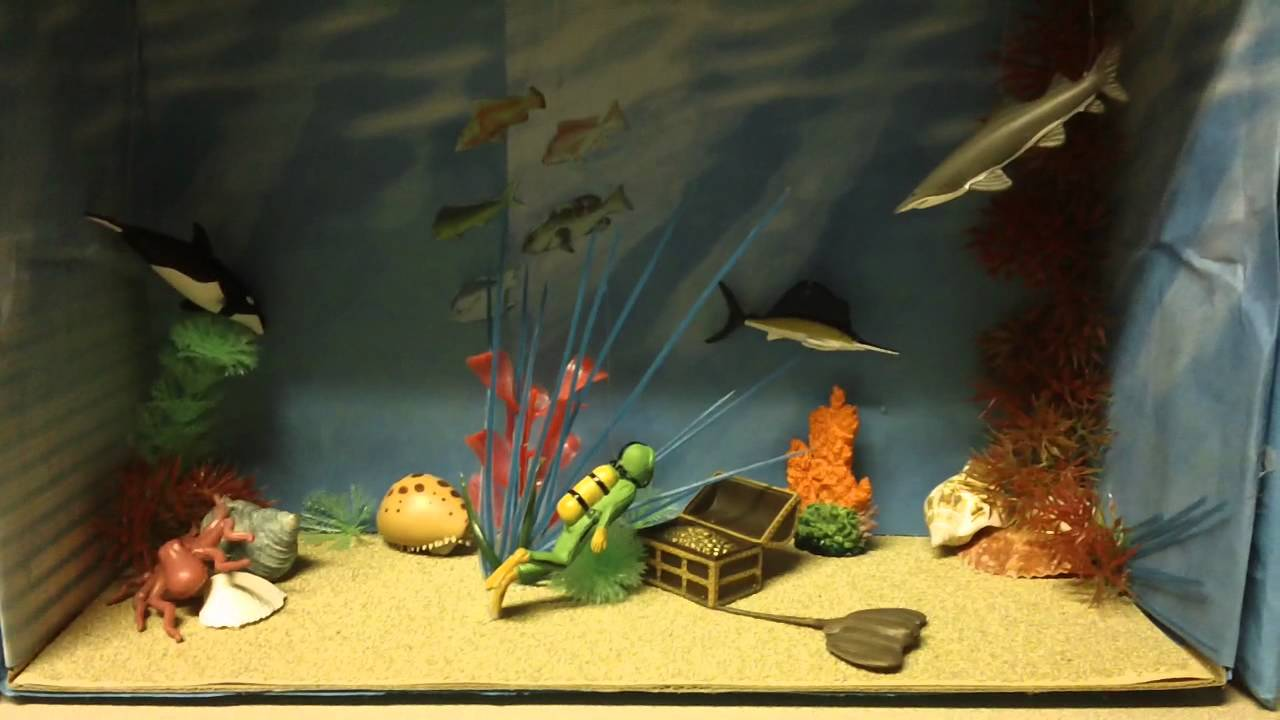 biome diorama project
