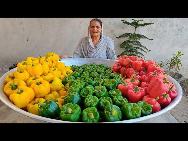 POTATO CAPSICUM MASALA  ALOO SHIMLA MIRCH  CAPSICUM RECIPE  VILLAGE COOKING  VEG VILLAGE FOOD