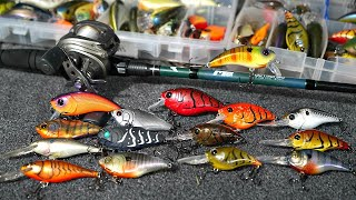BEST Crankbaits for Early Prespawn Bass Fishing!!!