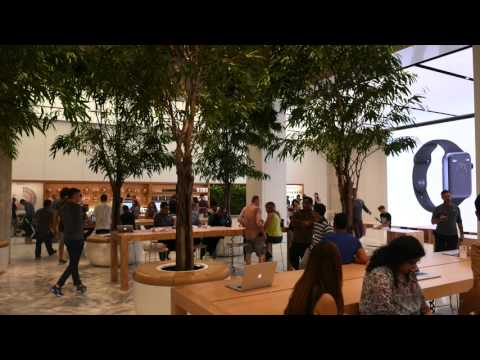 Inside World's largest Apple Store in Dubai, Mall of the Emirates