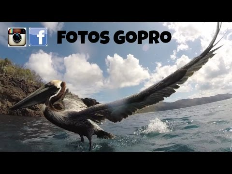 Consejos GoPro: Como tomar fotos GoPro para subir a Instagram y Facebook
