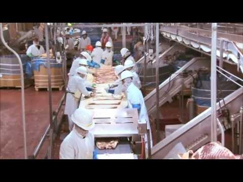 Video Tour of a Pork Plant Featuring Temple Grandin