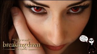 Breaking Dawn Part 2 Parody by The Hillywood Show®