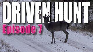 Driven Hunt Episode 7 - Deer & Wild boar in Östergötland - Drückjagd - Drevjakt - Battue