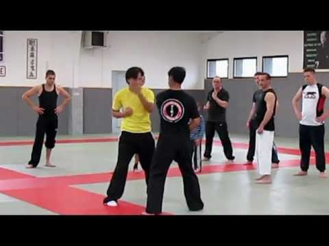 Wing Chun Kung Fu Image 1