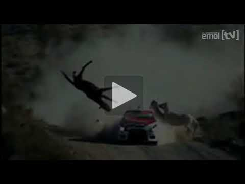 Accidente rally. Federico Villagra atropella a un caballo!!!!!!