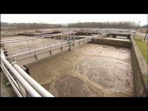 Medikamente Im Trinkwasser - ZDF Frontal21