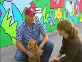 KETC | Living St. Louis | Stray Dog Rescue