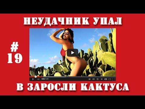 Видео приколы | #19 | Неудачник упал в заросли кактуса.