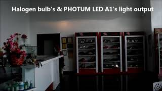 Comparism Photum LED A1 with Halogen Bulb