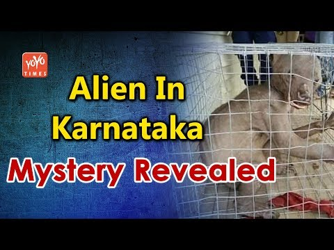 Karnataka's Alien Mystery Revealed | Exclusive Video | Antur village | Neelgund village | YOYO Times