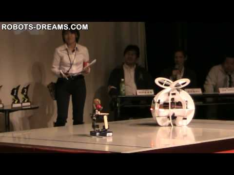 ROPO-1: Flying Robot Battle