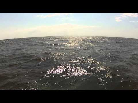 Lake  Woods Fishing Report on Walleye Fishing   Lake Of The Woods Fishing Report Video 7 4 12