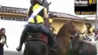 حصان يغتصب بنت