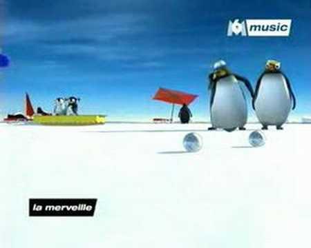 Pingu video