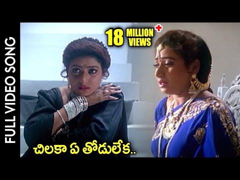 Subhalagnam Movie    Chilaka Ye Thodu Leka Video Song    Jagapathi...
