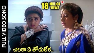 Subhalagnam Movie || Chilaka Ye Thodu Leka Video Song || Jagapathi Babu, Aamani, Roja