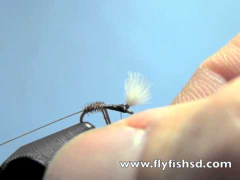 Fly Tying With Hans Pheasant Tail Midge Pupa