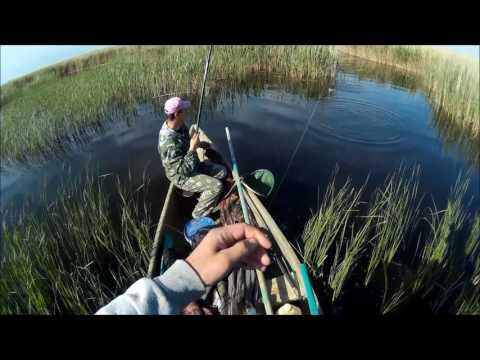 рыбалка прогноз клева в тихорецке