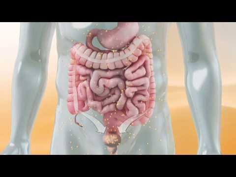 Die Grosse Wirkung der Vitamin-C-Hochdosis-Infusion